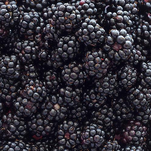 Blackberries- half pint