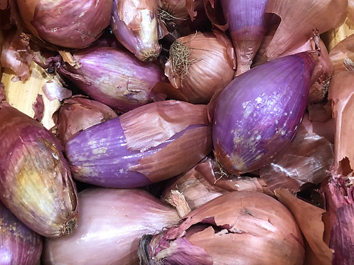 Shallots- Red