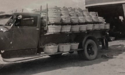 Truck (2).jpg