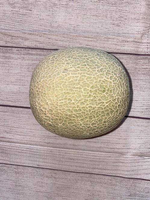 Melon- Cantaloupe
