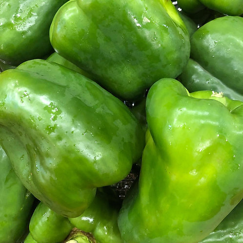 Peppers- Green Bell