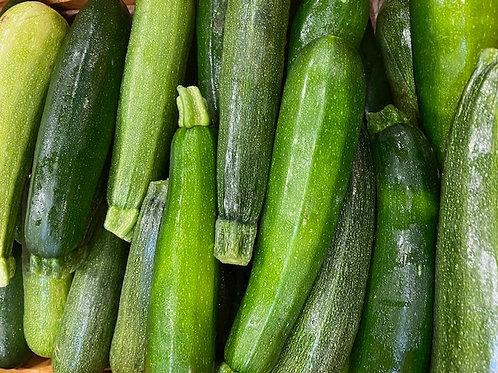 Squash- Green Zucchini- OUR OWN