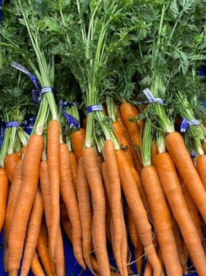Carrots- Bunched