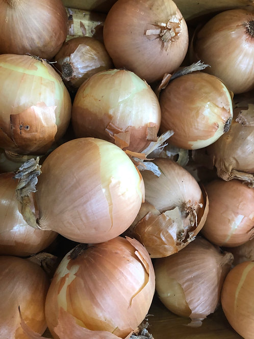 Onion- Cooking