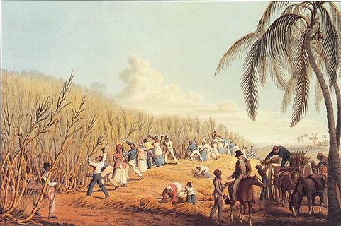 slaves-cutting-sugar-cane.jpg