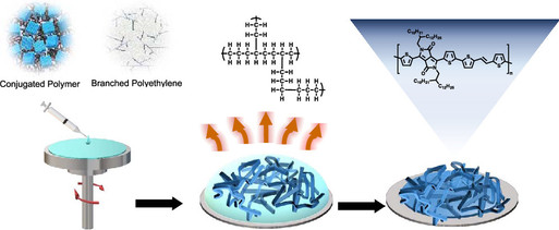 Morphology and Electronic Properties of Semiconducting Polymer and Branched Polyethylene Blends