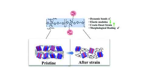 Influence of Amide-Containing Side Chains on the Mechanical Properties of Diketopyrrolopyrrole-Based Polymers