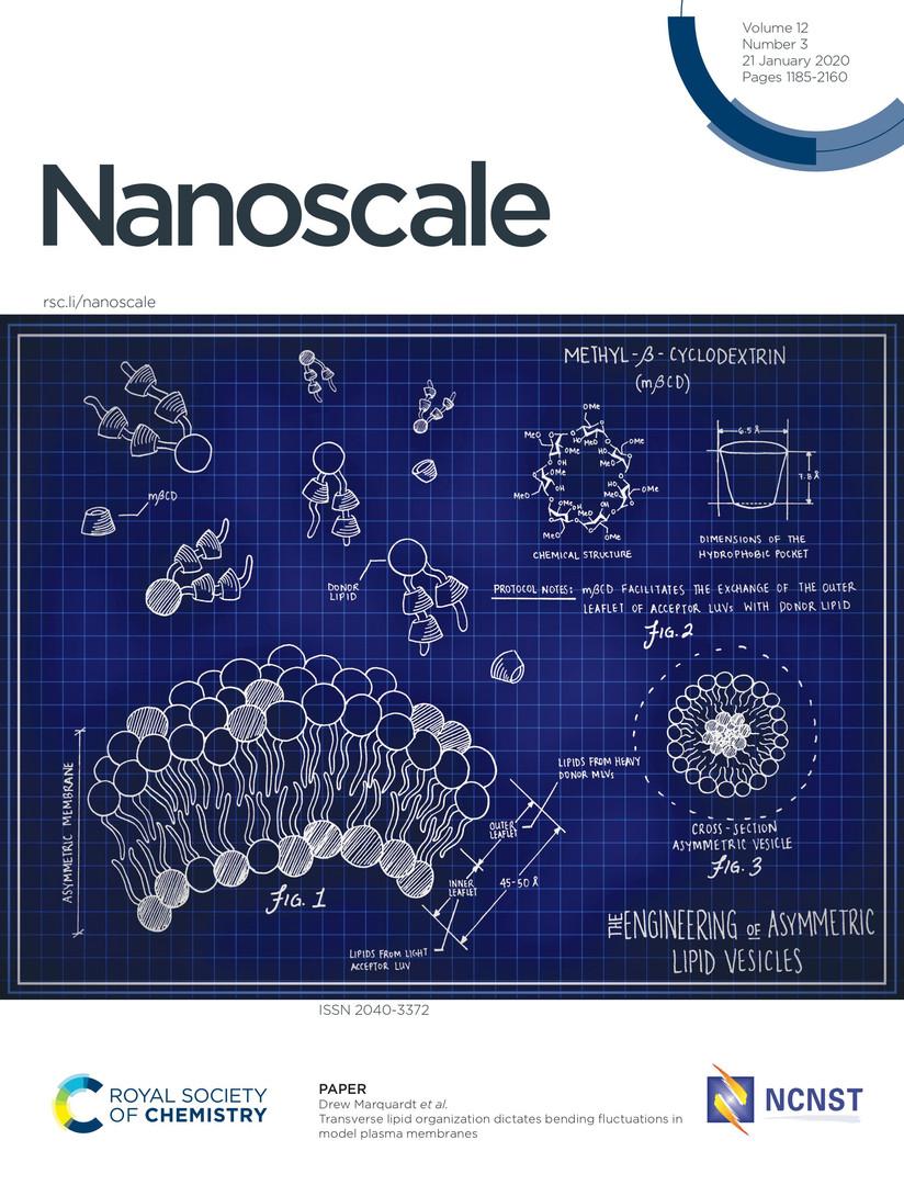 Nanoscale JPEG.jpg