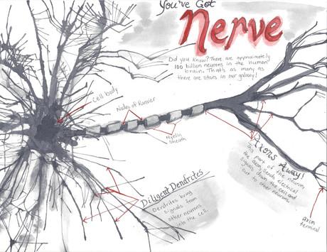 You've Got Nerve