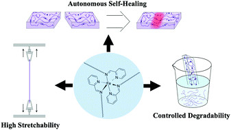Imine and Metal–Ligand Dynamic Bonds in Soft Polymers for Autonomous Self-Healing Capacitive-Based