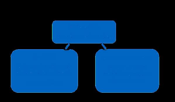 GDRS Structure diagramm.png