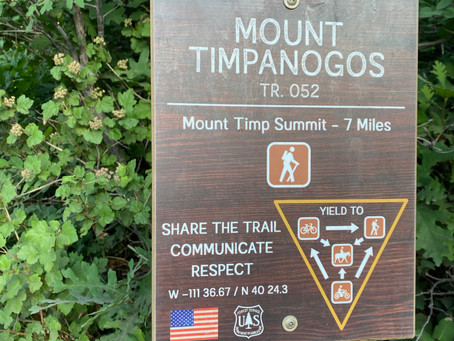 Training Tips for Hiking the Mt. Timpanogos Summit Trail