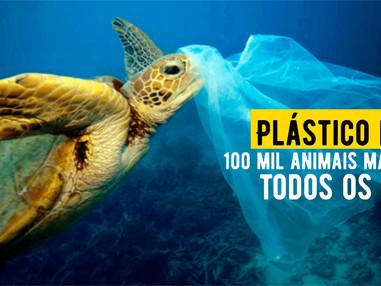 Plástico mata 100 mil animais marinhos todos os anos