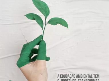 A Educação Ambiental tem o poder de transformar sociedades e culturas