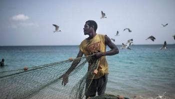 Década dos oceanos, instituída pela ONU inicia em todo o mundo