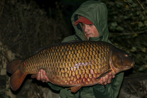 Buster 40lb+