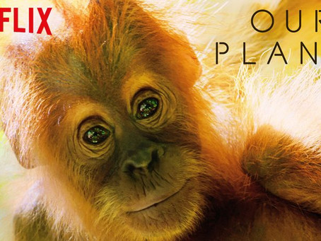 Netflix's 'Our Planet': Watch and Learn