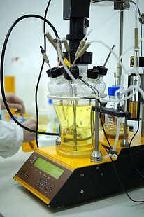 Utilization of LAMBDA laboratory Peristaltic pumps in fermentation and cell cultures