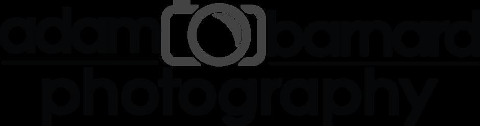 AB-logo_TransparentBG.png