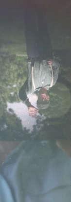 20-02-12~Veil~Dennis~Fiore.jpg.jpg