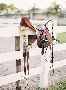 Hermes Equestrian _ Oughton Limited.jpg