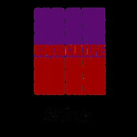 Copy of Copy of COLOR CULTURE  COLOR CUL