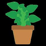 buy-plants-online.png