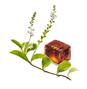 Ricola_herb.png