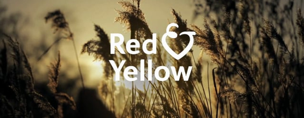 Red & Yellow Care Planning Film