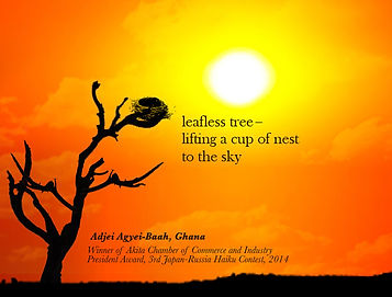 leafless tree haiku Adjei Agyei-Baah
