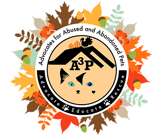 A3P Logo_Thanksgiving.png