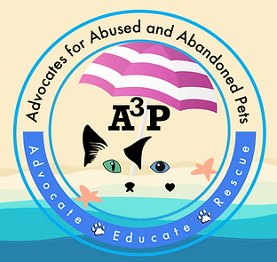 A3P Logo_Dog Days of Summer.png