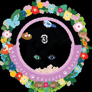 Logo_Spring.png