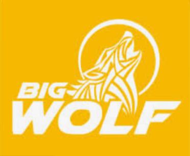 Big Wolf Marketing