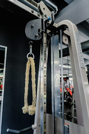 Arcadium Fitness Sport Ansbach Plate Loaded