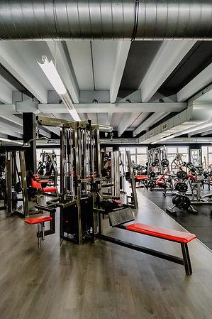 Arcadium Fitness Ansbach Plate Loaded Gerätetraining Gewichte