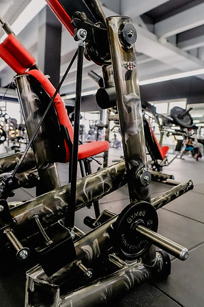 Arcadium Fitness Sport Ansbach Gym80 Plate Loaded Gerätetraining