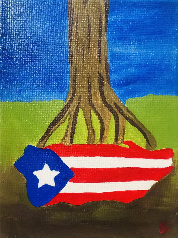 Raices Puerto Rico by Anishka Ayala