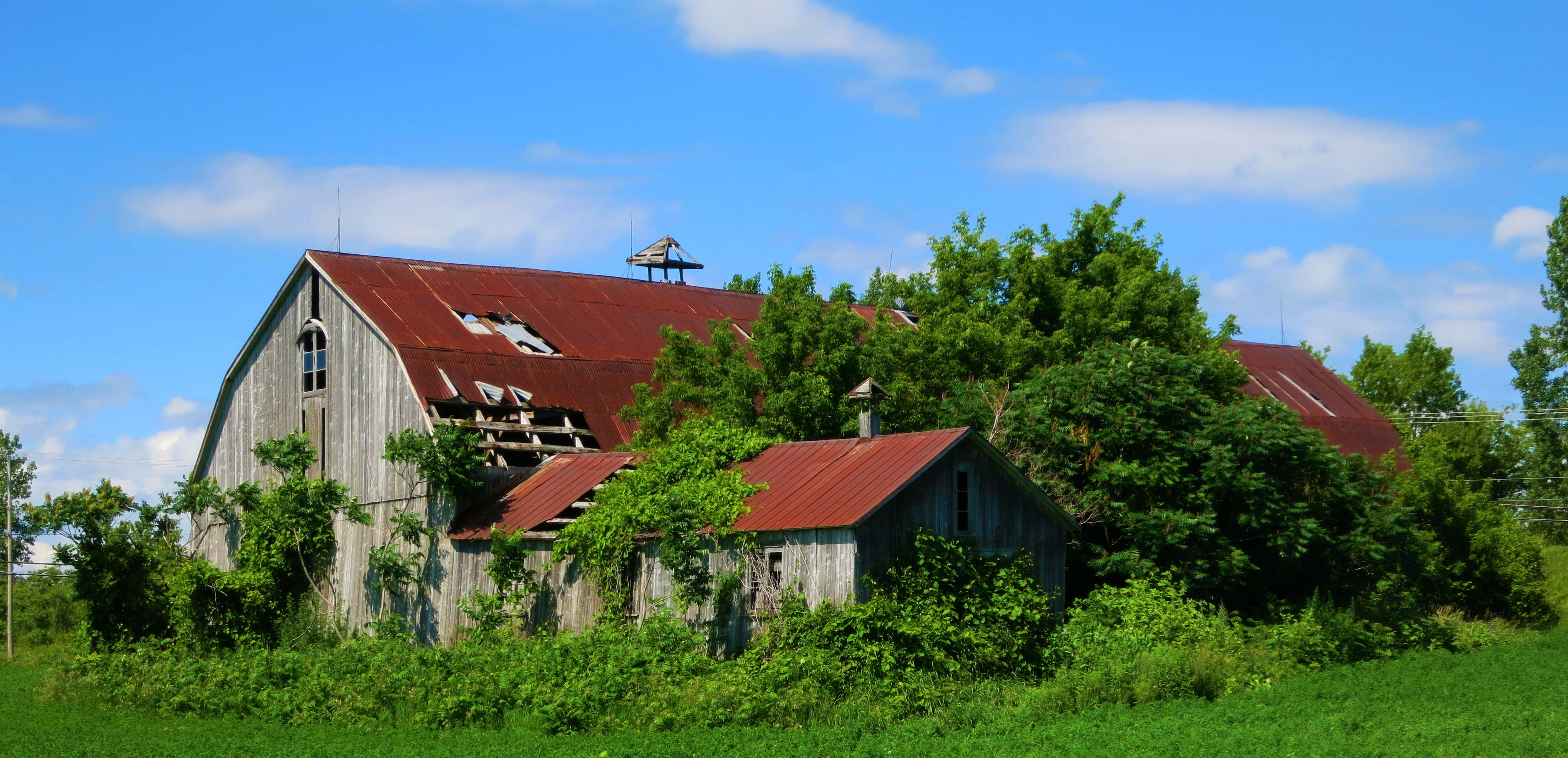 Country Barns