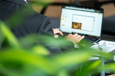 Green Business Conference (Online) - WIX