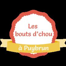 logo-puybrun2.png