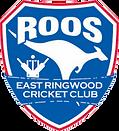 East ringwood Cricket logo.png