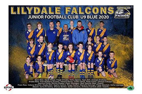 Lilydale Falcons Football Club Team Photo