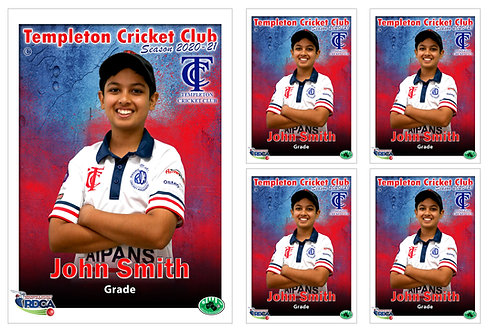Templeton Cricket Player Portrait – 5 in 1 Pack