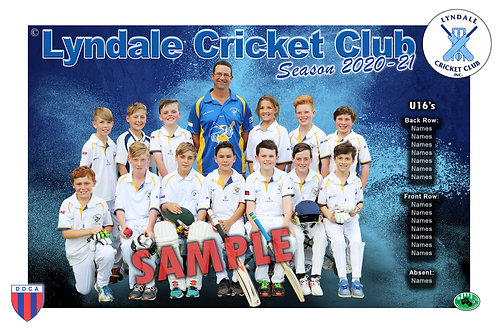 Lyndale Cricket Team Photo