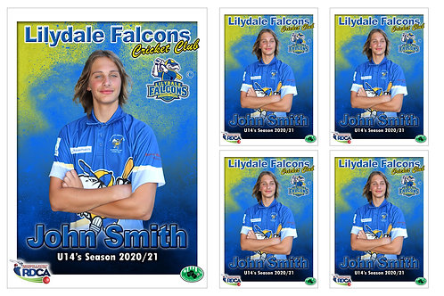 Lilydale Falcons Cricket Player Portrait – 5 in 1 Pack