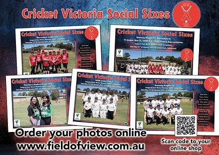 Social Sixes Team Photo Flyer.jpg