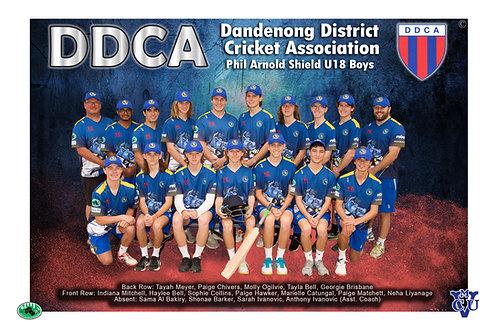 DDCA Cricket Team Photo