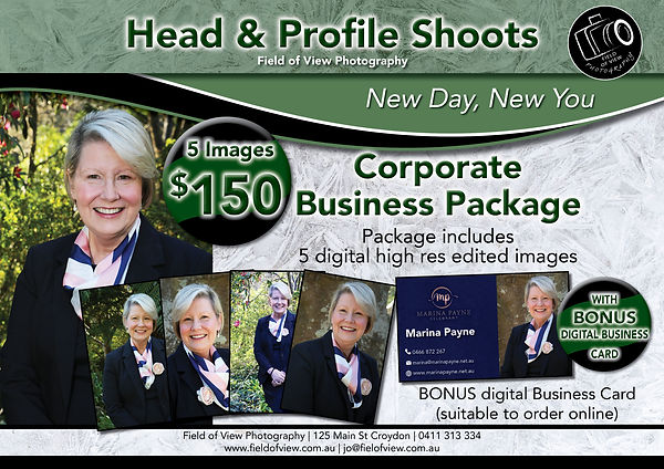 Corporate Business Package FLyer.jpg