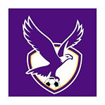 Boroondara Eagles football club logo.jpg